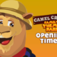 Opening Times 2021